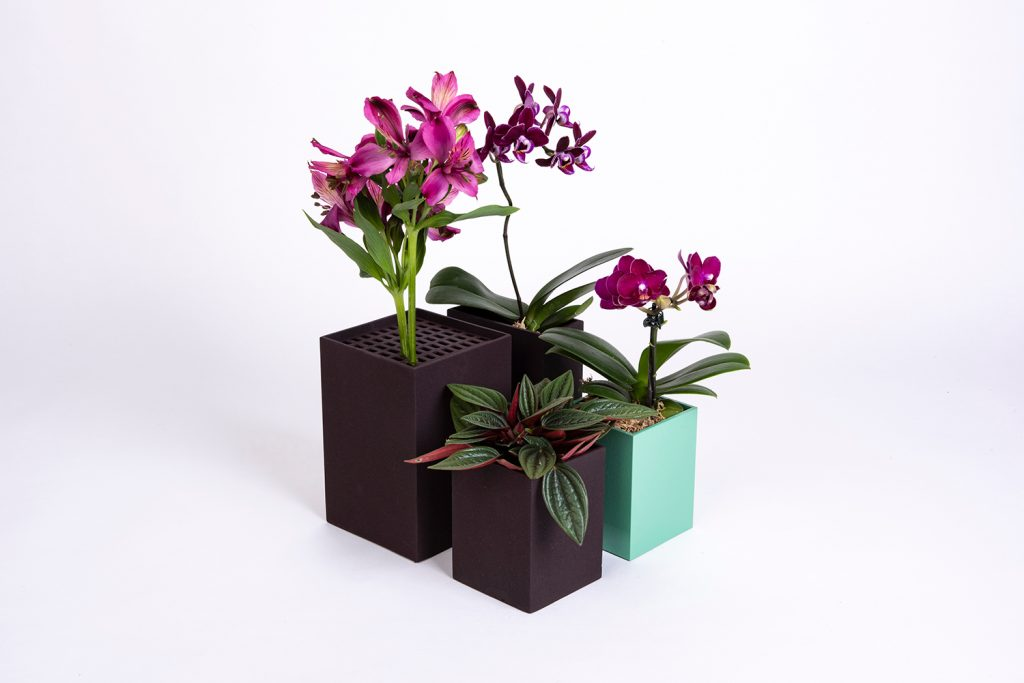 Vasos compõem a decoração e podem mudar a cara da sua casa ou escritório